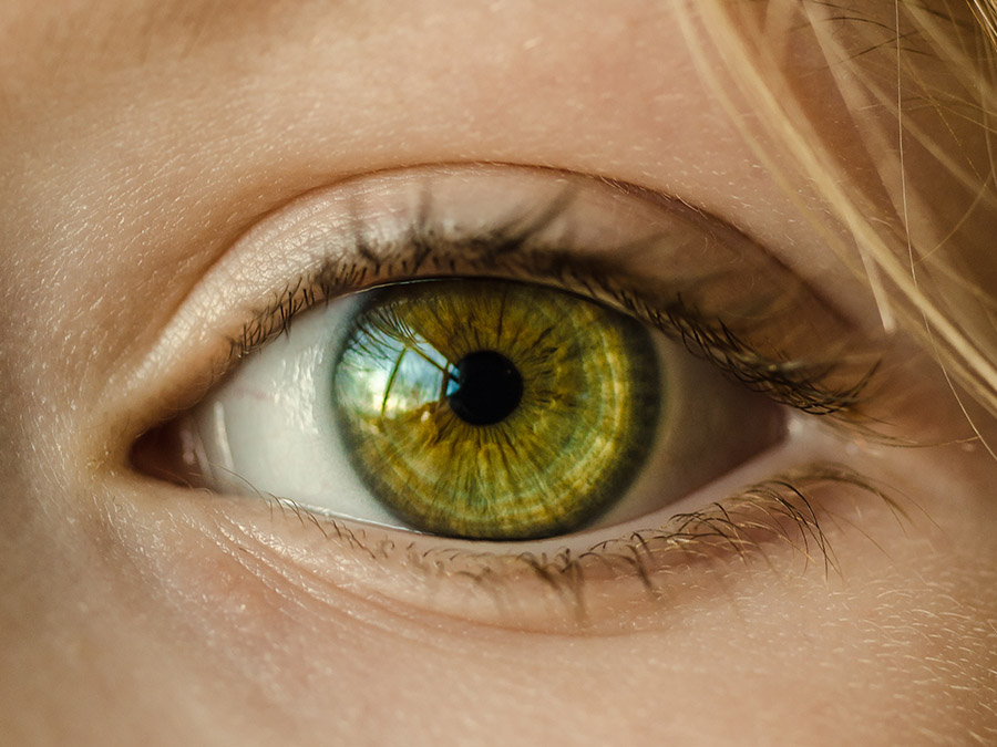 Herbal remedies for your eye health