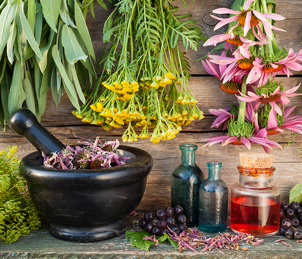 naturopathic approach to medicine