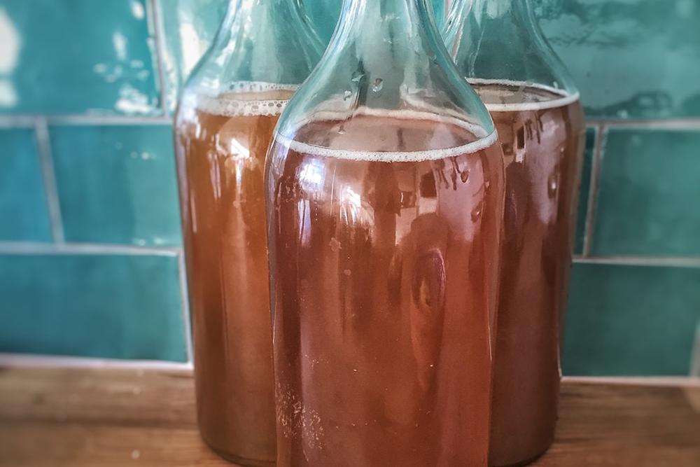 bottles of kombucha